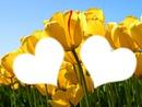 les amoureux au tulipe