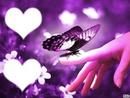 coeurs - Papillon sur un doigt