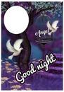 angel good night