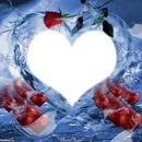 coeur en roses rouge