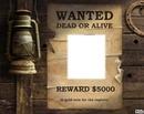wanted, rehecher