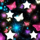 4 étoiles parmi les papillons