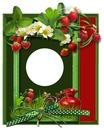 cadre fraises des bois