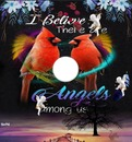 i belive in angels