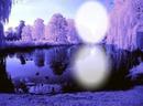 Moon Light 1