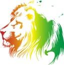 love lion...