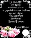 Les roses de l'amitié