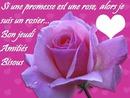 rose texte