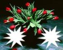 bouquet de Tulipes rouge