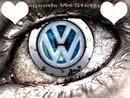 Volkswagen fan