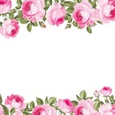 Rose florale
