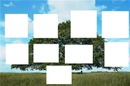 arbre genealogique clem