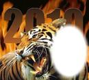 животные... тигрррр!...