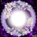 #Profil violet