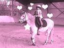 le cheval n est pas  qu une passion c est aussi  le plaisir d être  avec son cheval