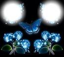 fleurs et papillon bleu