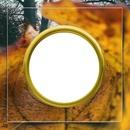 cadre feuille d'automne 1photo