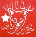 Wild foxes
