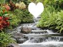 coeur en cascade