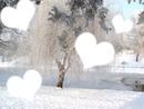 Cadre coeur d'hiver