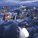 Paradis des chiens