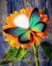 Cc Buenos días con flor.