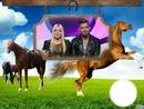 cheval alexia vincent