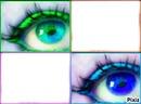Les yeux posé