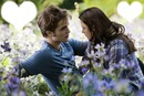 bella swan i edward