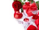 corazones y rosas rojas