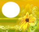 Fleur jaune-soleil