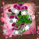 Que des fleurs