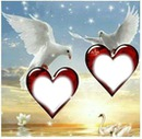 les conlombres de l'amour avec 2 cadres coeur