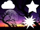 3 photos sur fond Foret violette & lune