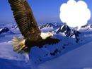 Paysage montagne avec oiseau