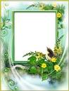 Cadre - feuilles fleurs - oiseau
