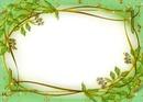 Cadre-fleurs-vert