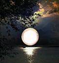 moon stars ocean night