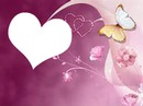 mariposas de amor