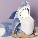requin bebe