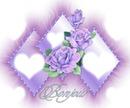 Rose triangle scène