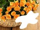 Vive les fleurs*
