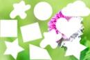 Fleur, 10 photos