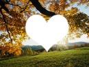 Coeur paysage
