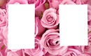 2Cadre #Fleurs ♥