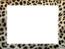 Cadre léopard