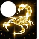 scorpion style
