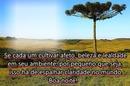"""Anoitecer na Colina! By """"Maria Ribeiro"""""""