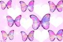 des papillons parmi les coeurs 5 photos