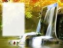 Nature - ruisseau